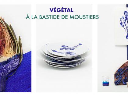 Végétal à La Bastide de Moustiers